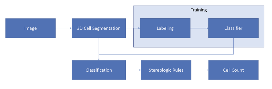 Cellairus machine learning