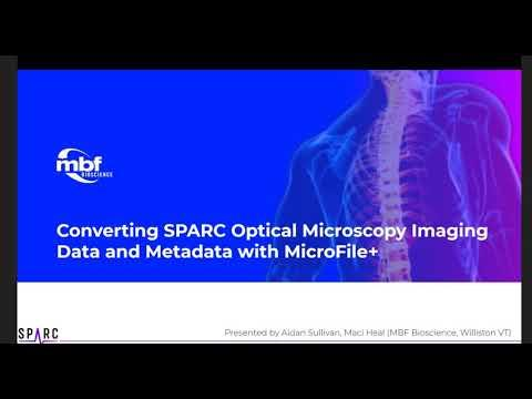 Converting SPARC Optical Microscopy Imaging Data and Metadata with MicroFile+